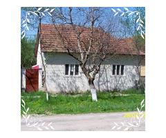 Casa  com Brazii jud Arad  cu piscina linga riu